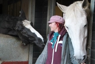 Equine holistic health and therapy